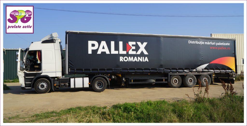 PALEX_03-1